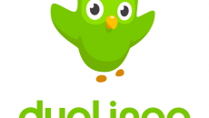 Chegou o app oficial do Duolingo para o Windows Phone