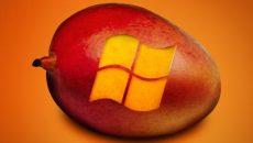 Microsoft confirma Windows Phone Mango dentro de duas semanas