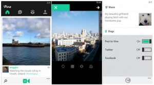 vine app oficial windows phone 8 screenshot