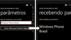 [Desenvolvimento] Windows Phone: Como enviar parâmetros de uma página para outra da APP