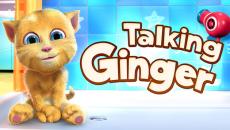 Chegou o popular jogo Talking Ginger na Windows Phone Store