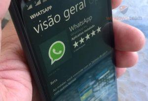 whatsapp beta windows phone header
