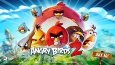 Angry Birds 2 não será lançado para o Windows Phone