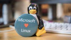 Suporte ao Service Fabric no Linux chega ainda este mês