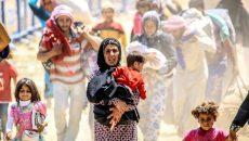 Microsoft e Nokia se juntam para criar serviço de telefonia voltado para refugiados