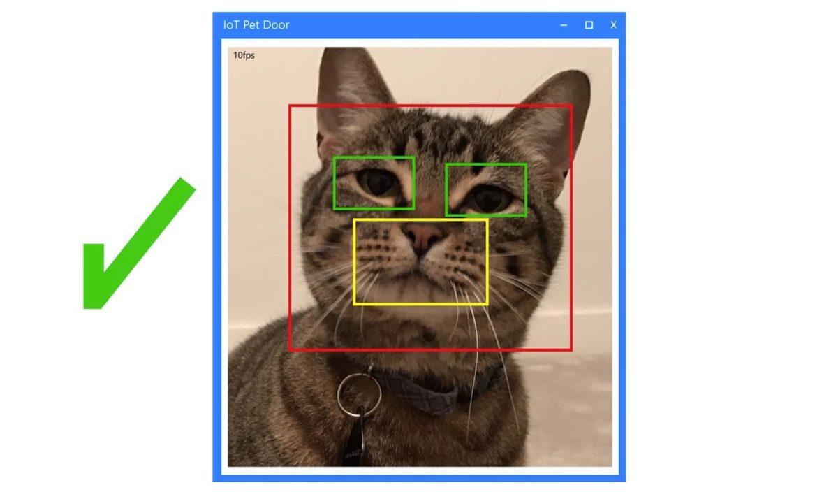 Windows 10 IoT é usado para criar sistema de reconhecimento facial de Pets