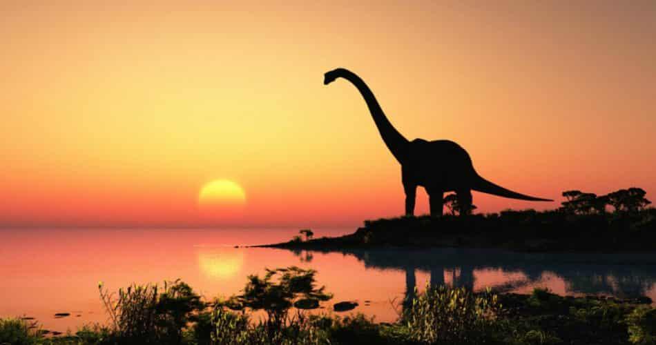 Esta enorme pegada de dinossauro foi encontrada completamente por acidente!